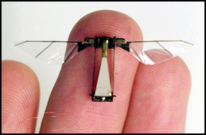 IA et arme létale  Robot_insect