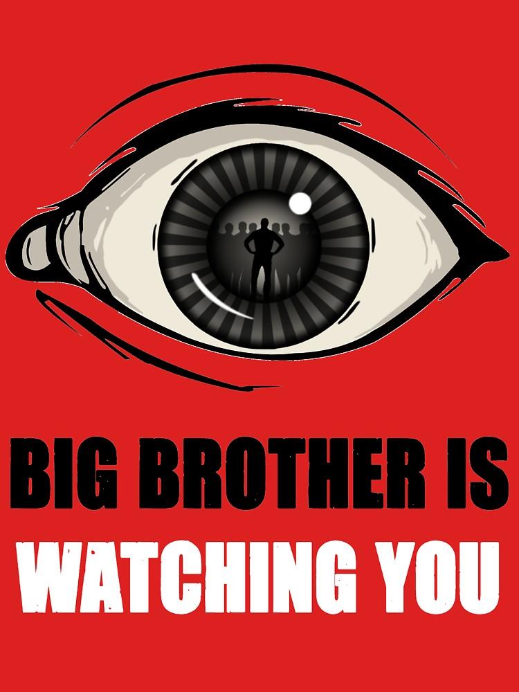 Le prisonnier dit non à Big Brother | Mondialisation.ca